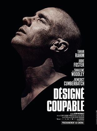 Désigné Coupable 2020 DVDRIP Film Streaming